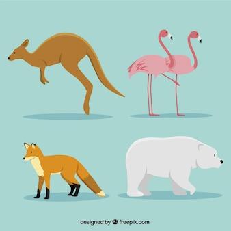 Packung mit vier dekorativen Tieren