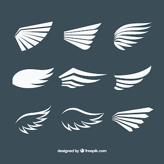 Packung mit weißen Flügeln in flachem Design