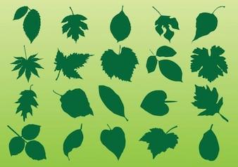 Pflanzenblätter Vektoren