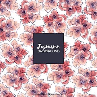 Retro-Hintergrund mit Jasmin Hand gezeichnet Aquarell
