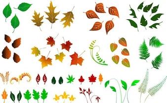 riesige Sammlung von Vektor-Blätter
