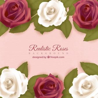 Rosa Hintergrund mit Rosen in realistischen Design