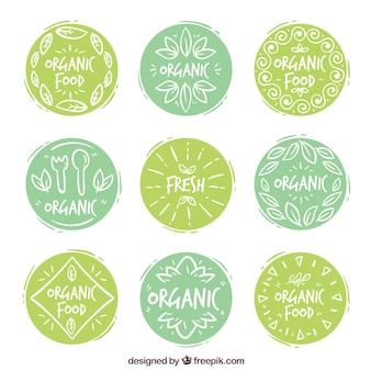 Sammlung von dekorativen Aufklebern mit handgezeichneten Bio-Lebensmitteln