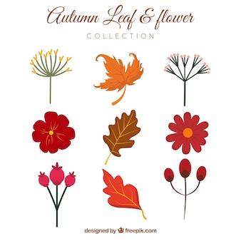 Sammlung von Hand gezeichnet Blume und Blätter