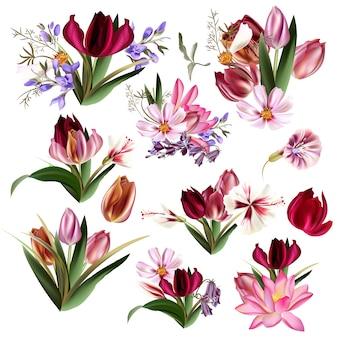 Satz von verschiedenen Blumen
