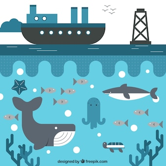 Schiff und das Leben im Meer