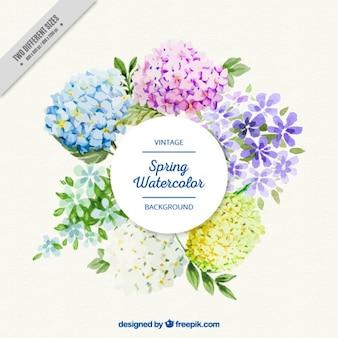 Schöne Aquarell Blumen-Label