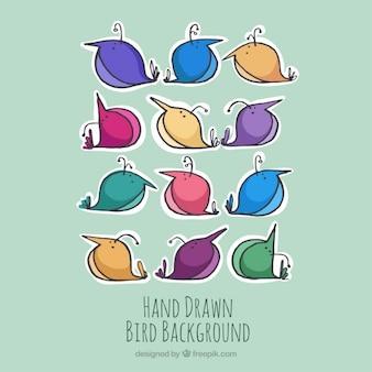 Schöne Hand farbige Vögel Hintergrund gezeichnet