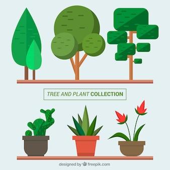 Pflanzen t pfe download der kostenlosen icons for Design von zierpflanzen