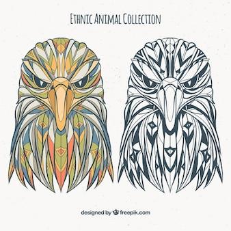 Set von ethnischen Adler in Farbe und Schwarz-Weiß