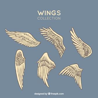 Set von Hand gezogenen Flügeln