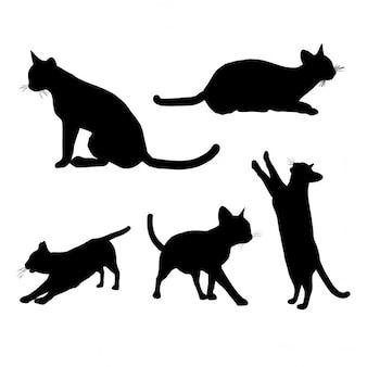 Black Cat Reaching Silhouette Tattoo