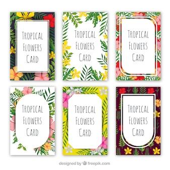 Tropische Sommerkarten-Set
