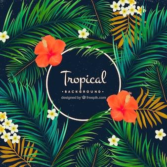 Tropischer Hintergrund von Palmen und Blumen