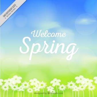 Unscharfe Frühjahr Hintergrund mit Blumen