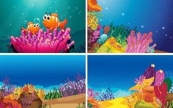 Unterwasserszenen