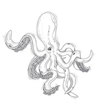 Vektor-Illustration eines Oktopus gemalt in einem Gravur-Stil isoliert auf weiß.