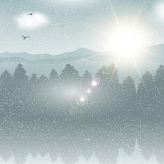 Verschneite Winterlandschaft Hintergrund mit Vögeln in den Himmel fliegen