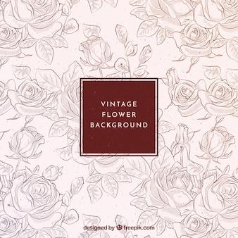 Vintage Hintergrund der Hand gezeichneten Rosen