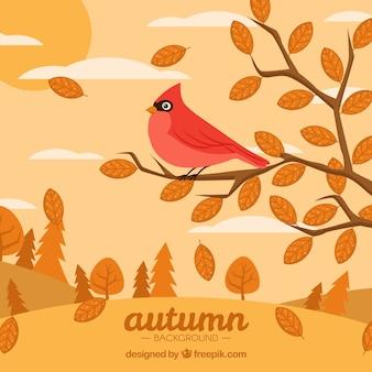 Vogel auf Zweigen mit flachem Design