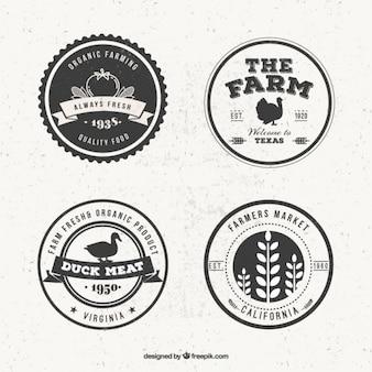 Weinlese-Bauernhof-Logo-Set