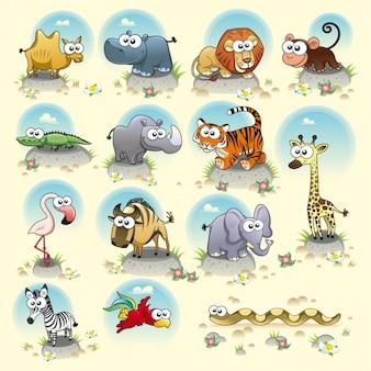 Wilde Tiere Sammlung