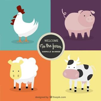 Willkommen auf dem Bauernhof