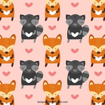 Adorável guaxinim e raposa padrão