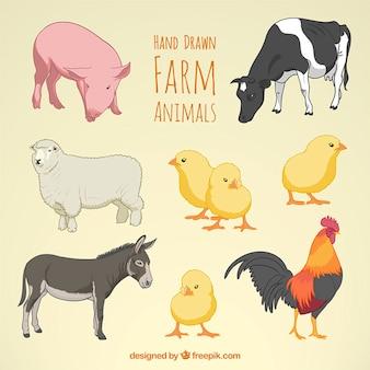animais de exploração agrícola desenhados mão