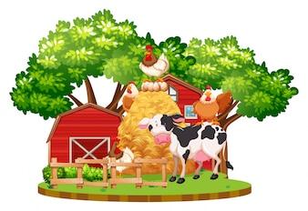 Animais de fazenda na fazenda
