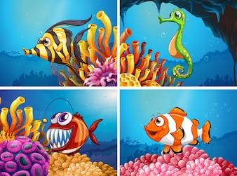 Animais marinhos debaixo do mar