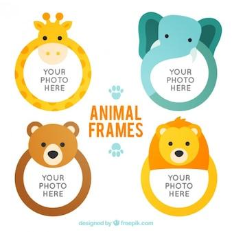 animais planas arredondado quadros