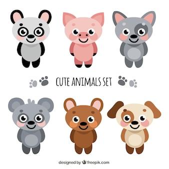Animais rostos