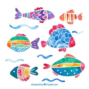 Aquarela coloridos peixes pacote