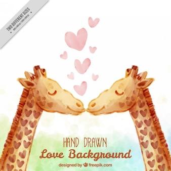 Aquarela linda girafas fundo