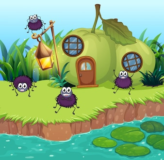 Aranhas vivendo em casa de guava