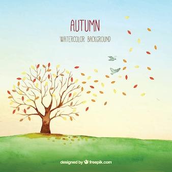 Árvore e pássaros de outono e aquarela