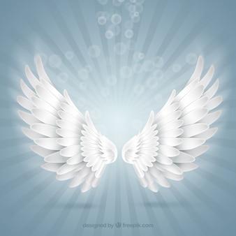 Asas brilhantes do anjo
