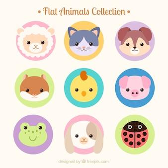 avatares linda animais desenhados mão