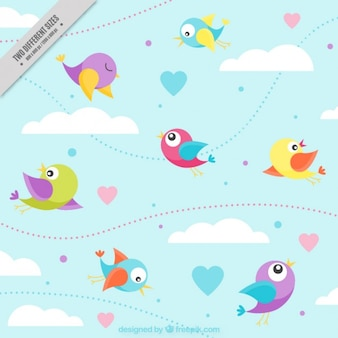 Aves coloridas agradáveis fundo voando