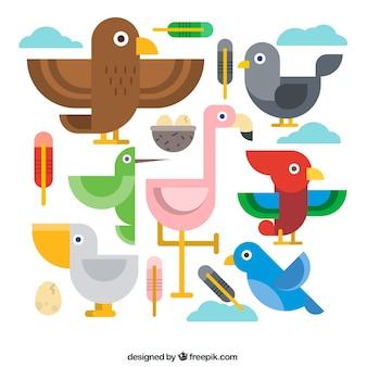 Aves geométricas em design plano