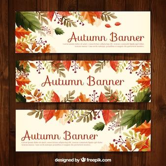 Bandeiras florais do outono