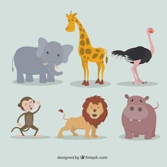 Bando de animais selvagens adoráveis