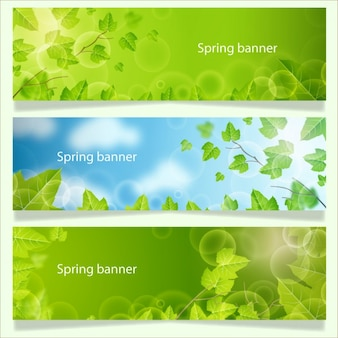 Banner Collection Primavera