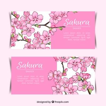 Banners bonitas da flor de cerejeira