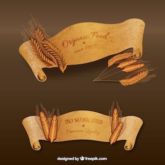 Banners de alimentos orgânicos