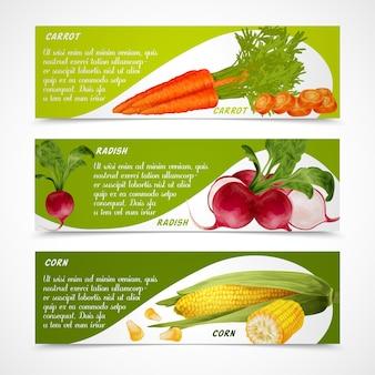 Banners de cenoura de rabanete de milho