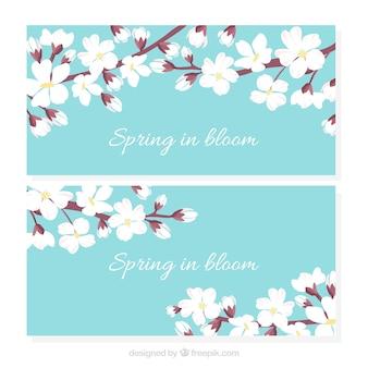 Banners de flores de cerejeira