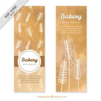 Banners trigo desenhados mão