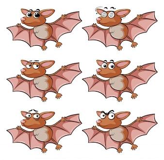 Bat com diferentes expressões faciais